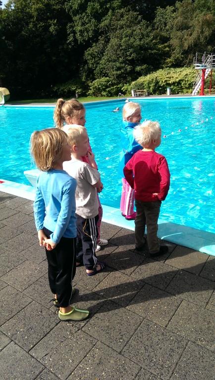 Zwemles en zwemgroep tijden